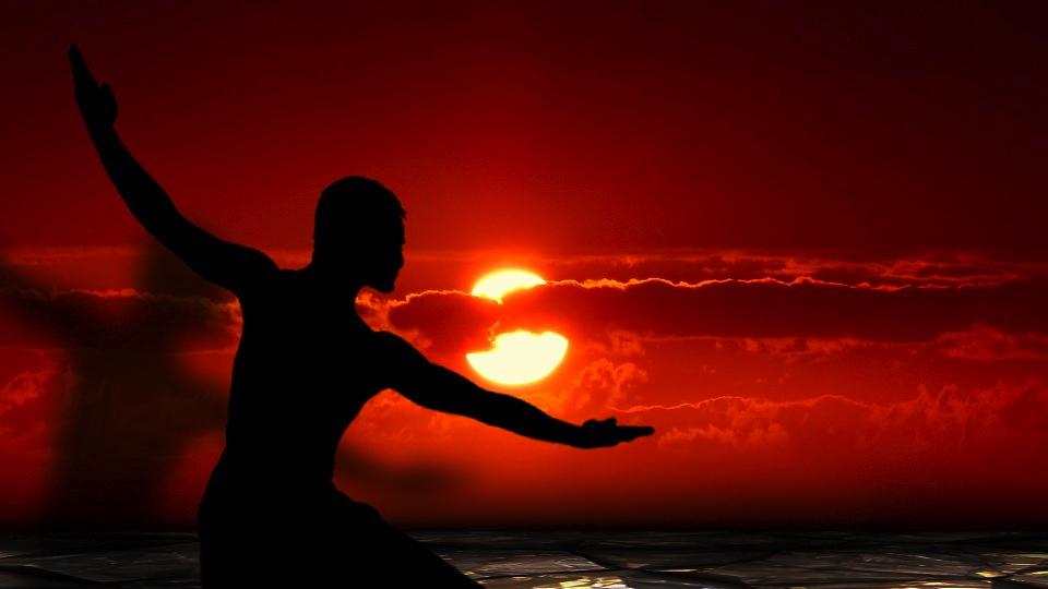 Martial arts silhouette