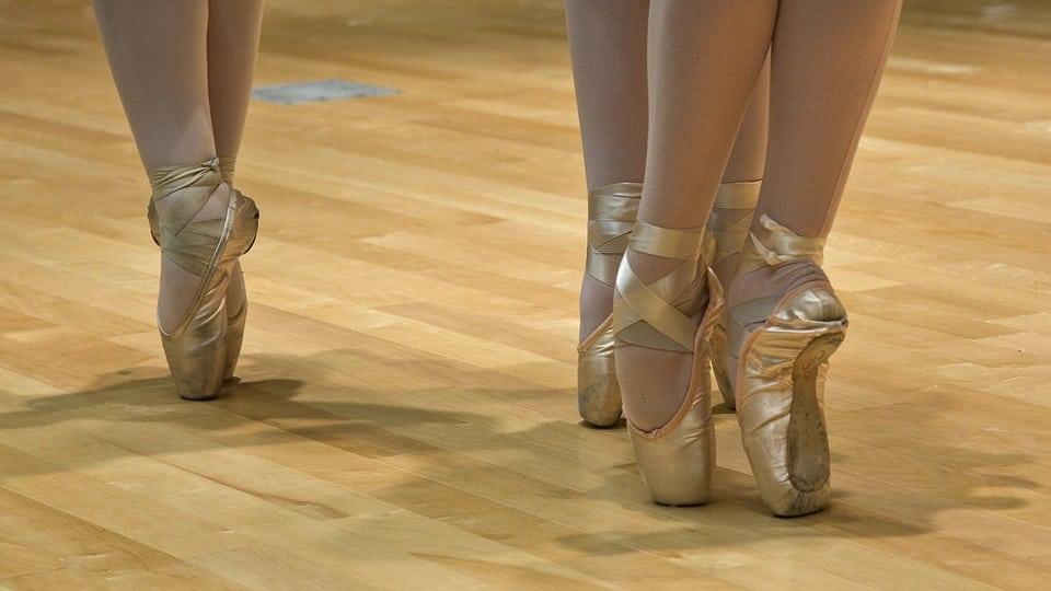 Pointe Shoes (public domain)