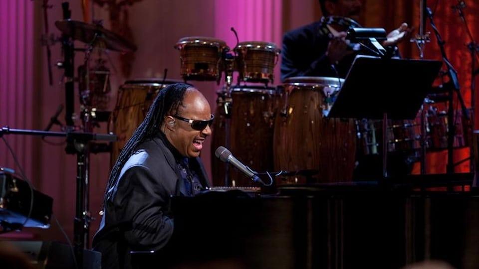 Stevie Wonder at the White House (Public Domain)