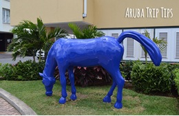 aruba sculptures