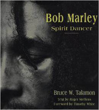 bob marley - spirit dancer