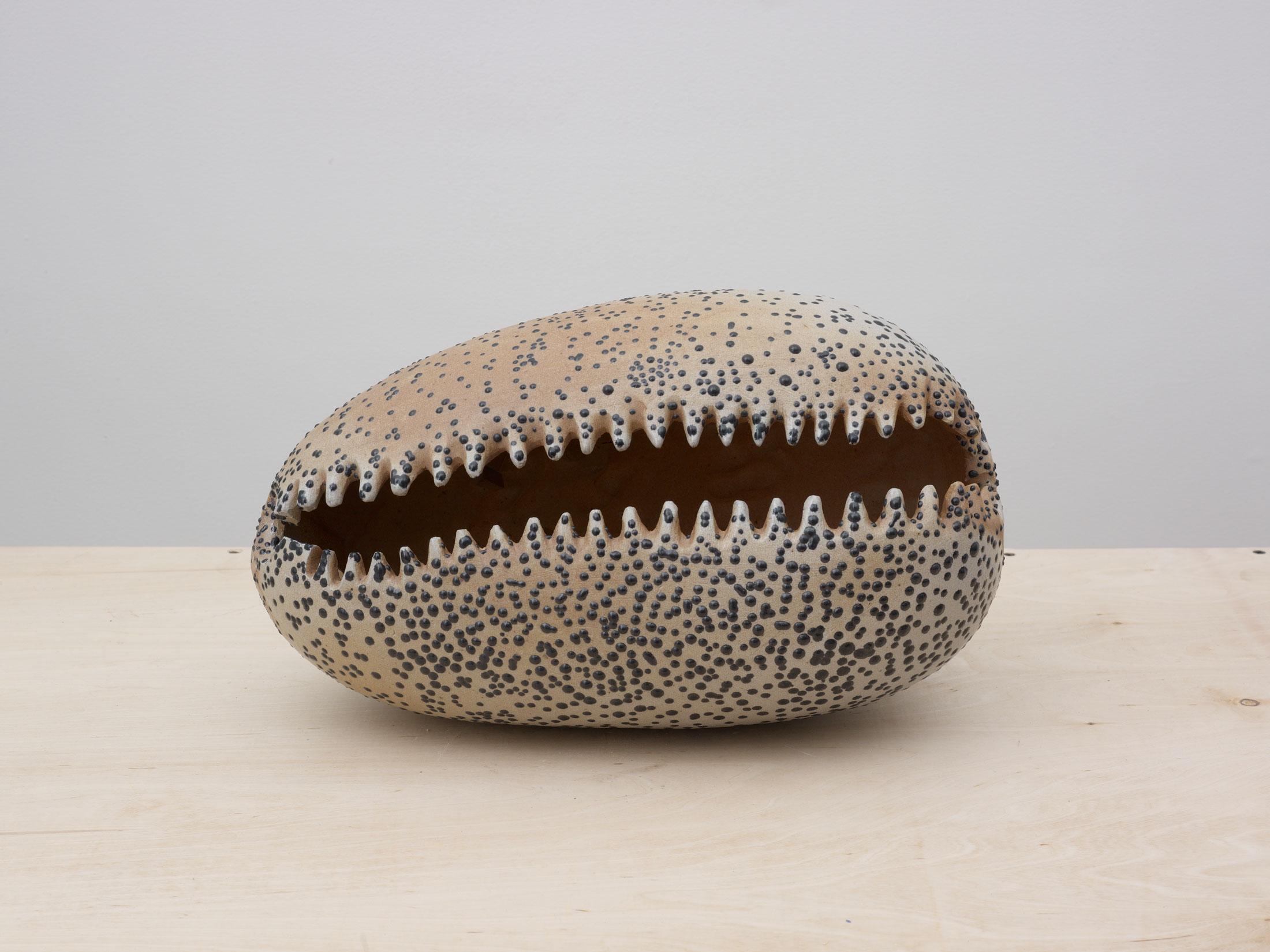 2012-Cowrie-n50-Tilton-gallery-5-7-12-7298-1-XLARGE