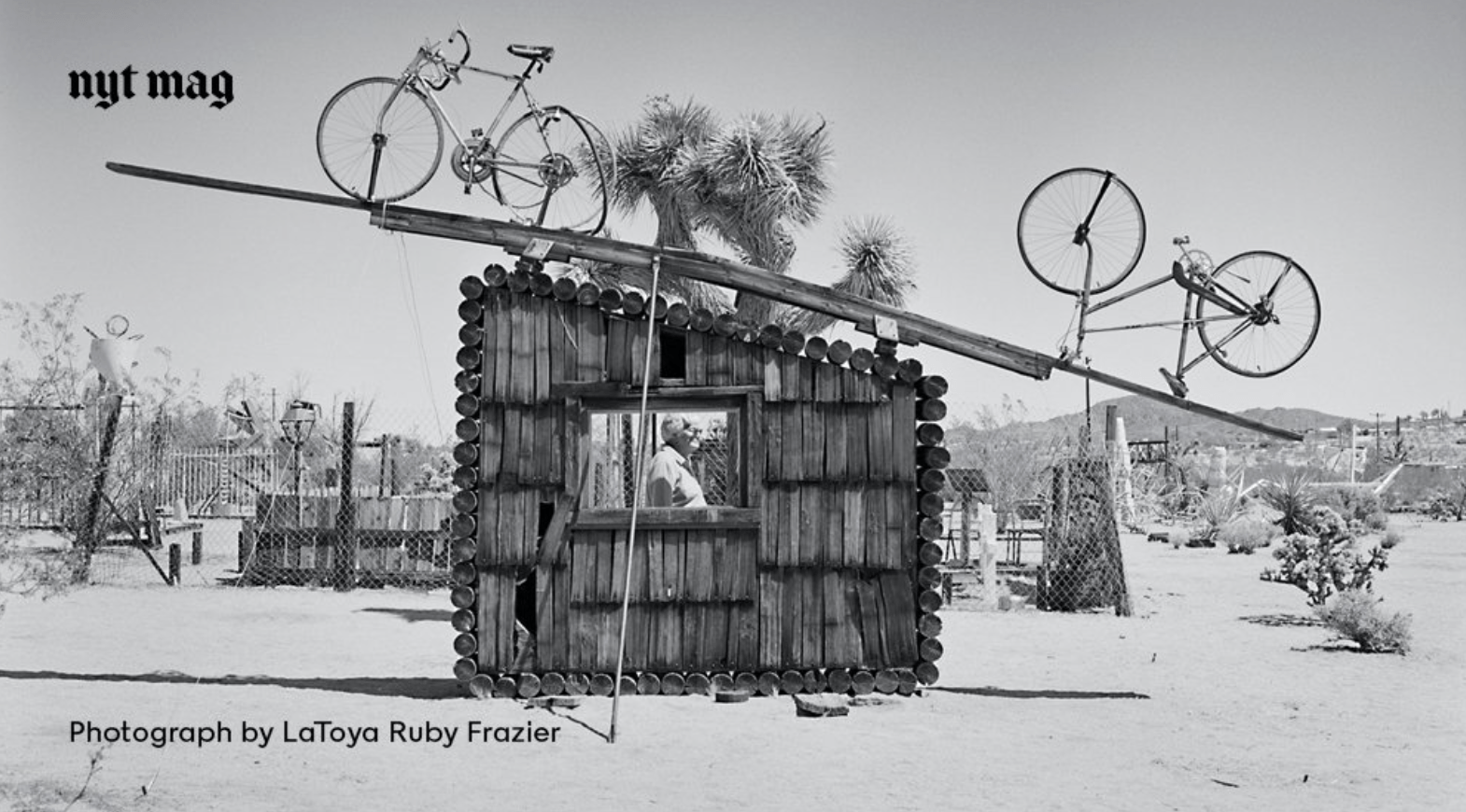 joshua-tree-outdoor-museum-by-latoya-ruby-frazier-for-nyt-mag