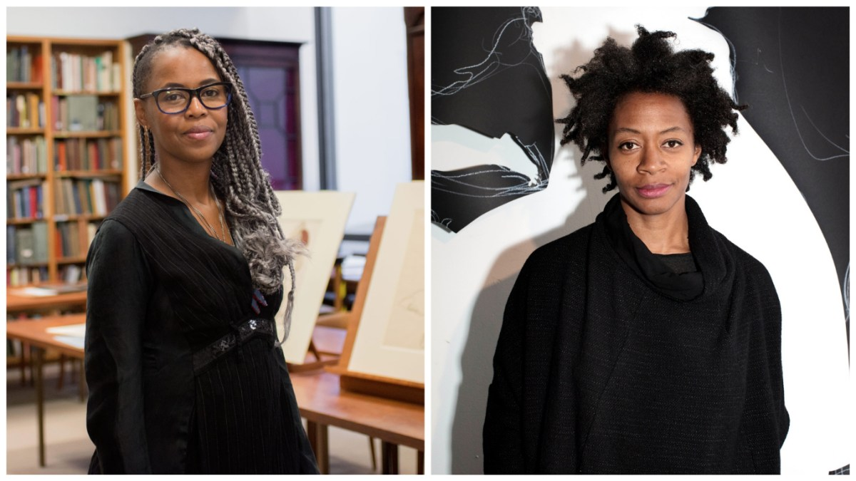 Artists Wangechi Mutu and Kara Walker Land Major Museum Commissions