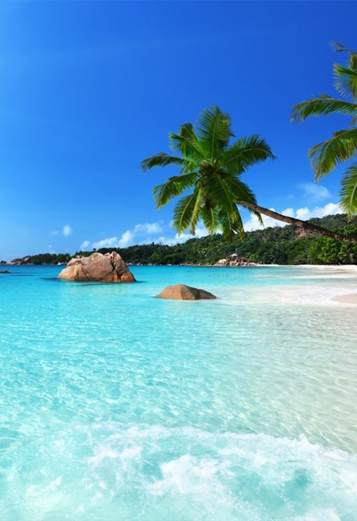 Seychelles in Africa. travel destination places in Africa to visit. Top 10 Romantic Travel destination places to visit in Africa. Safest places to visit in Africa. Best cities to visit in Africa. Top tourist countries in Africa. Best destinations in Africa Places in Africa list. Top 10 tourist attractions in Africa. Most beautiful places in Africa. Holidays in African countries. #AfricanTravel #traveltoAfrica