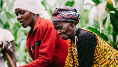 humanity unified international women in field