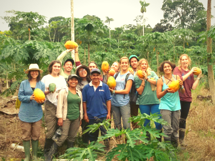 Sustainable Amazon Eco-Friendly Volunteering in Peru