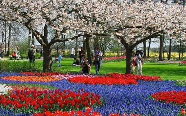 Holland's Most Colorful Attraction