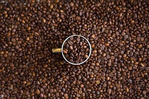 Future Uncertain for Worldwide Coffee and Cocoa Industries