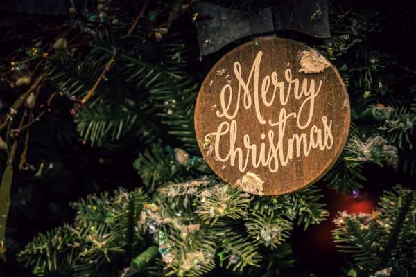 Merry Christmas sign in tree