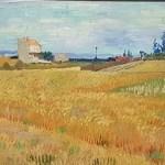 Japanse prenten en hun licht inspireerden Vincent van Gogh