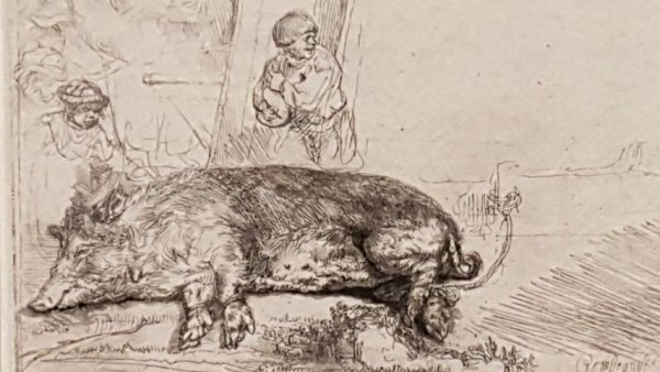Expositie Alle Rembrandts, varkensmarkt Amsterdam