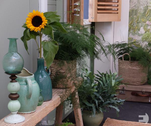Van Gogh zonnebloemen in de groene kamer.