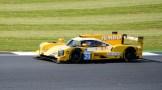 Racing |Team Nederland Dallara P217 - Gibson