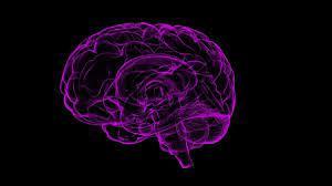 Beyin orgazmı nedir, bilim bu konuda ne diyor? 14