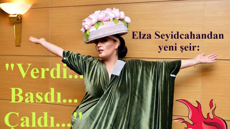 """Elza Seyidcahandan yeni şeir: """"Verdi... Basdı... Çaldı..."""""""