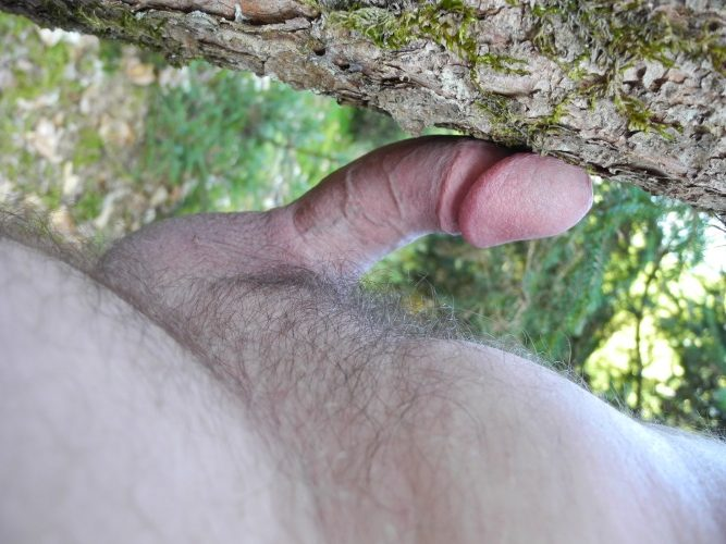 Subject of Male Orgasm
