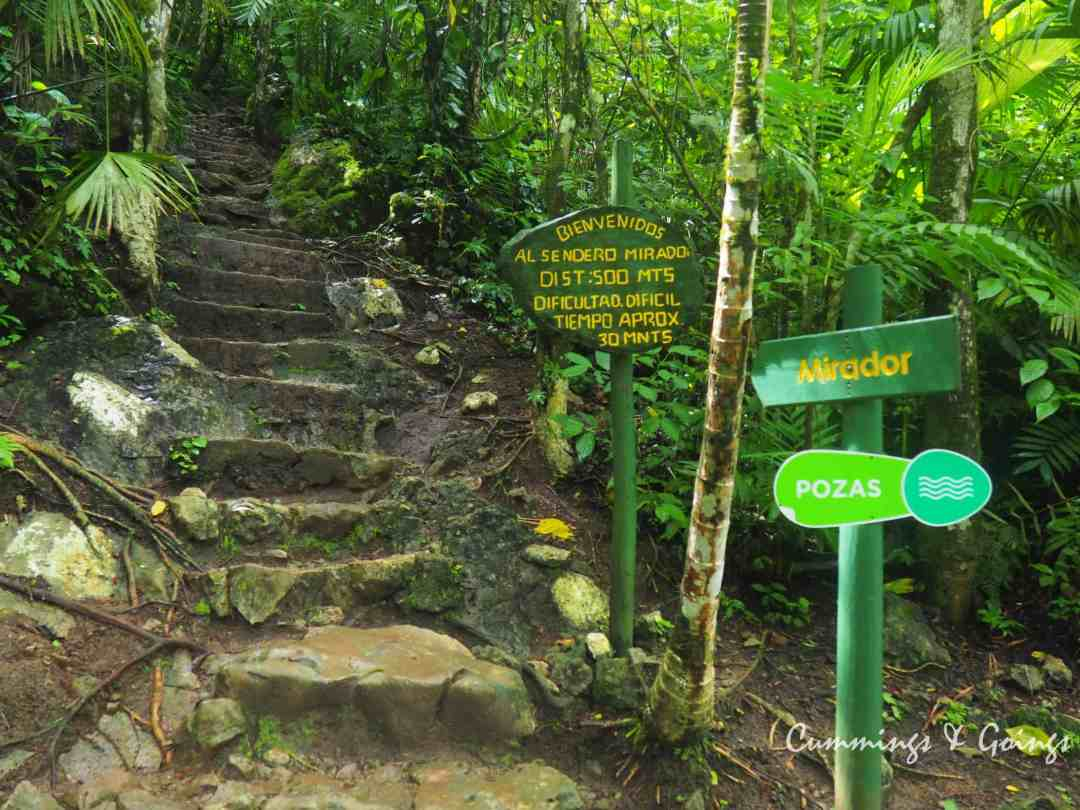 The hike of Semuc Champey