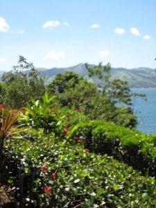 Tamarindo Costa Rica // Cupcake N Dreams