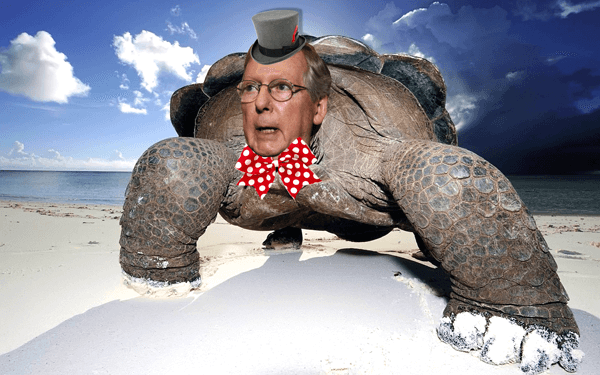 Mitch McConnell Turtle with top hat and bow tie