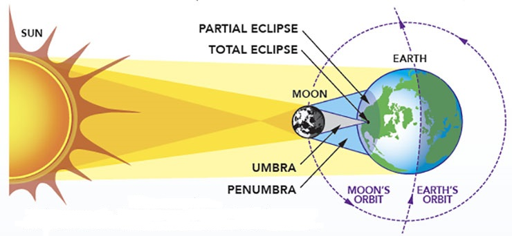 Solar Eclipse Geometry   www.cupcakesandthecosmos.com