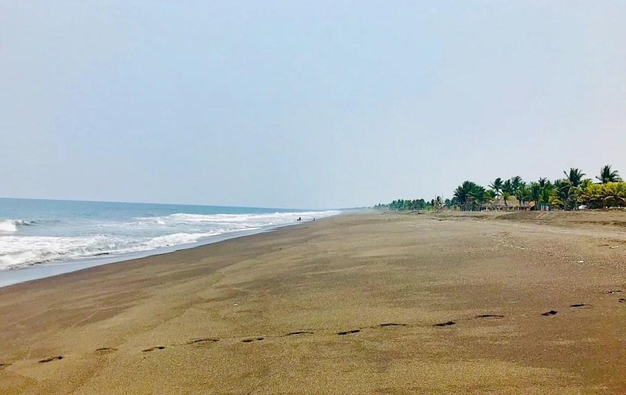 best central american beaches: guatemala monterrico