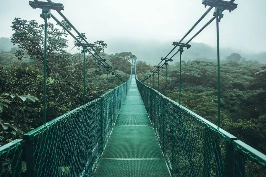 monteverde hanging bridges over the cloud forest in costa rica