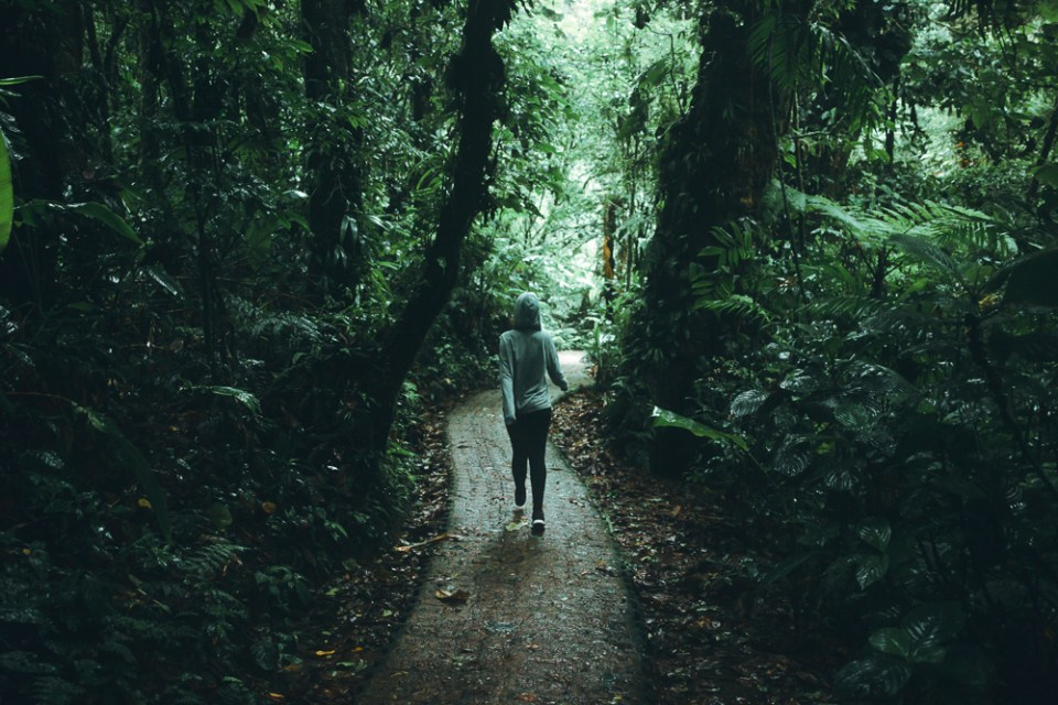 Backpacker girl on forest path in Monteverde: 11 things to know about costa rica pura vida