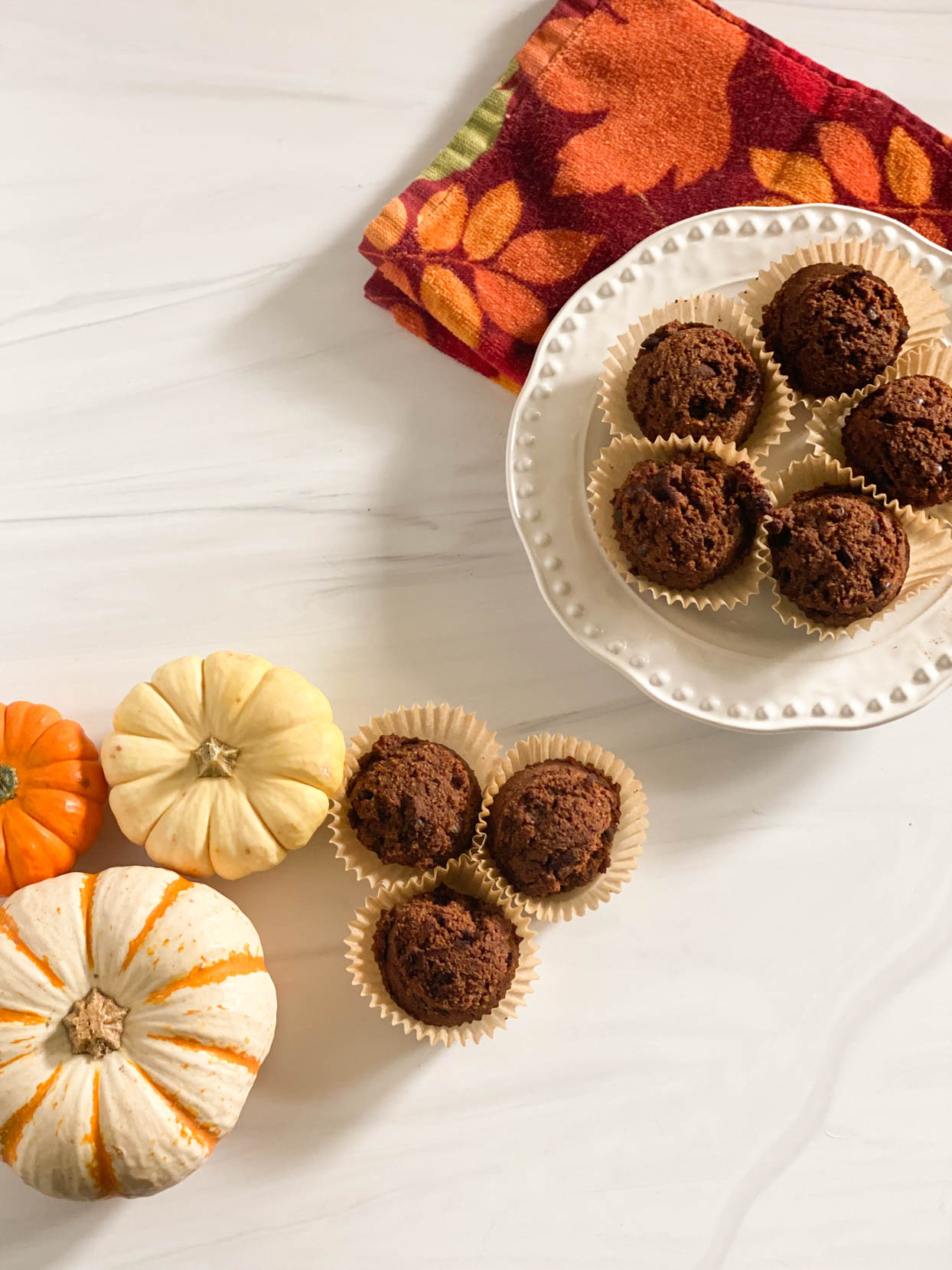 Chocolate Pumpkin Muffins- Grain Free, Vegan, Candida Diet