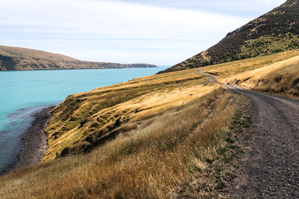 akaroa, new zealand | www.curatedlifestudio.com