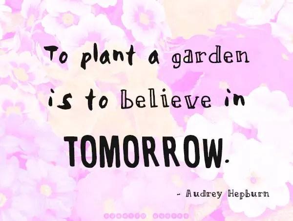 Plant A Garden Believe