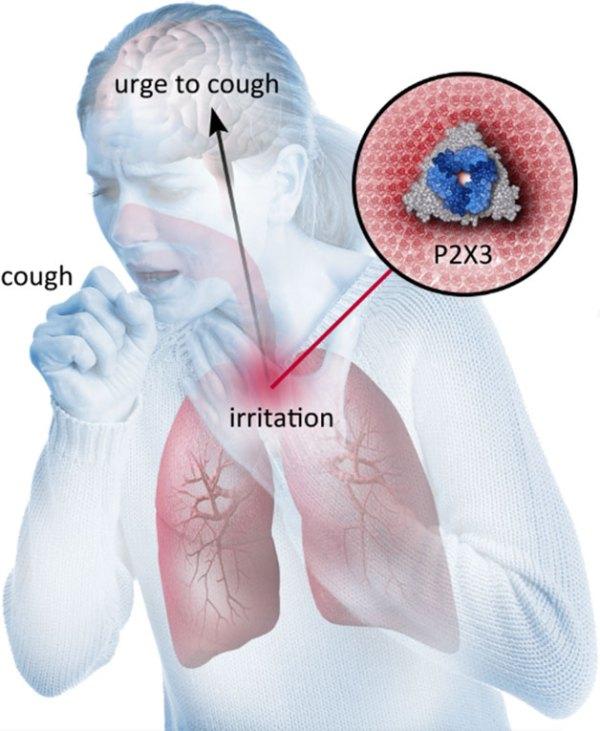 chronic cough min