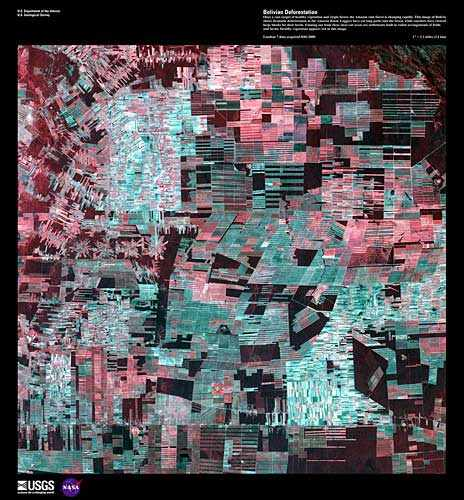 """Bolivian Deforestation"" Credit: U.S. Geological Survey  Department of the Interior/USGS http://eros.usgs.gov/imagegallery/earth-art#5"