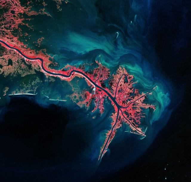 """Mississippi River Delta"" Photo: ESA http://www.esa.int/spaceinimages/Images/2012/05/Mississippi_River_Delta"
