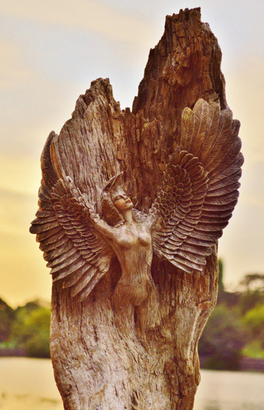 wood carving by mother nature and debra bernier