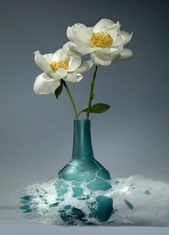high speed photography, beautiful flower vases, beautiful flowers