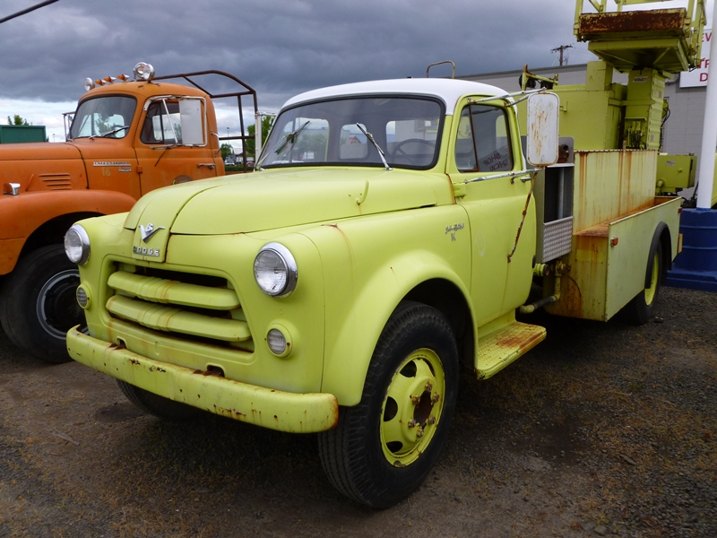 Truckstop Classic: 1954 Dodge V8 Job-Rated Truck – That Thing Got A ...