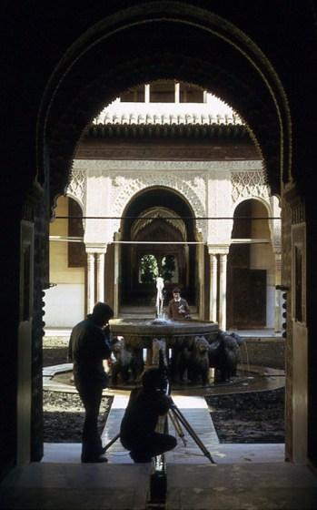 15 Alhambra Fountain
