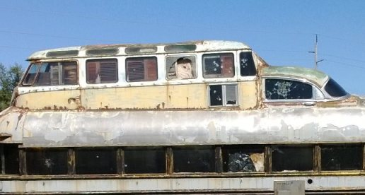 Hippie Bus Ray Charleton crop