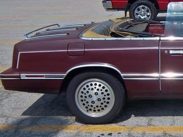 wheel (800x597)