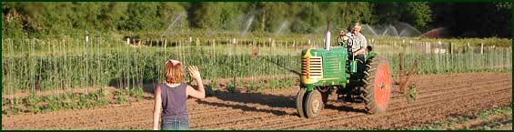 hentze tractor_wave