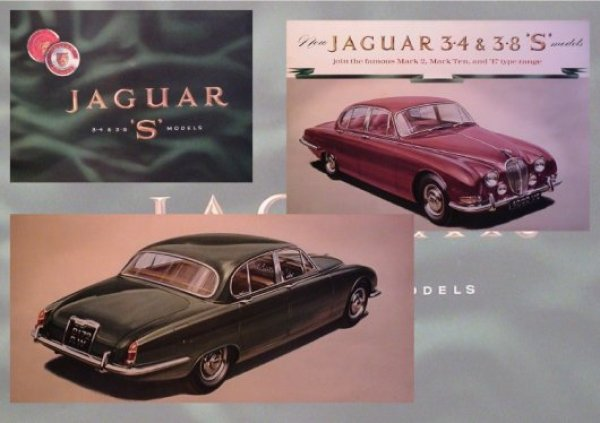 Jaguar-043-large