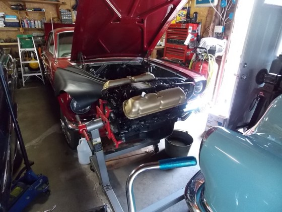 Mustang 15