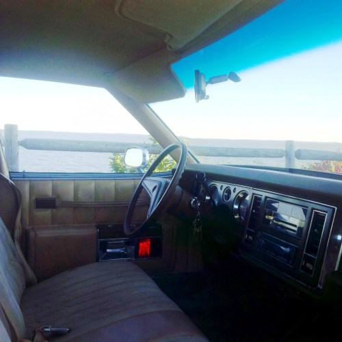 Buick 1977 Electra Interior from Passenger Side