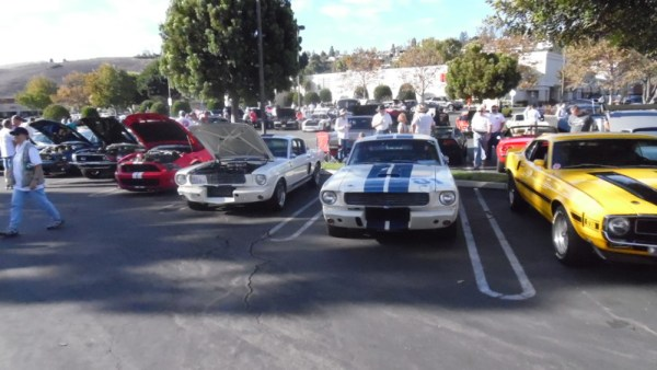 Shelby Lineup