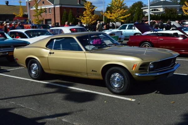 Mustang 1970 stripper