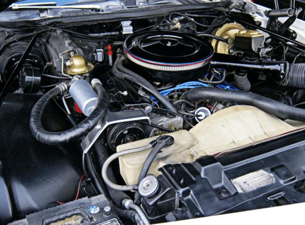 Buick 1975 Century Free Spirit eng