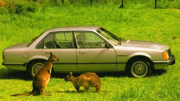 Holden-Commodore-1978-80-3