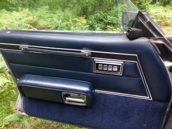 Dodge 1979 St Regis door