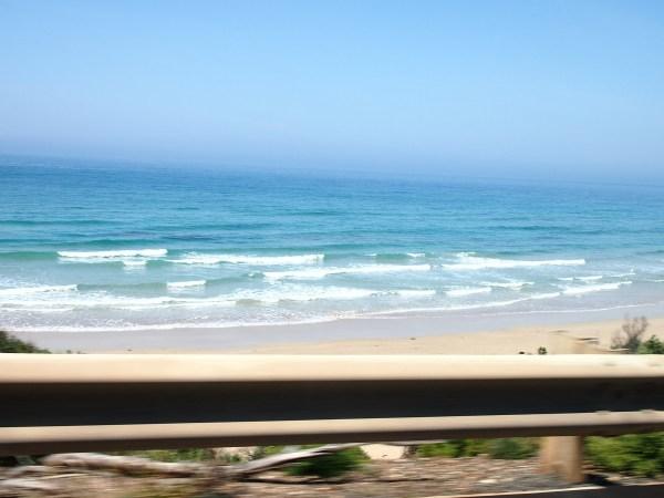 great ocean road (6)